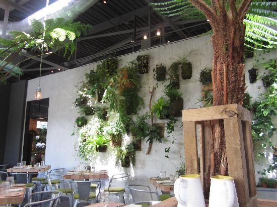 Thiết kế sân vườn đẹp trong nhà
