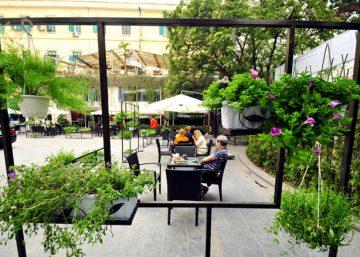 Museum Coffee & Tea - Quán cafe ngập tràn nắng và hoa 2
